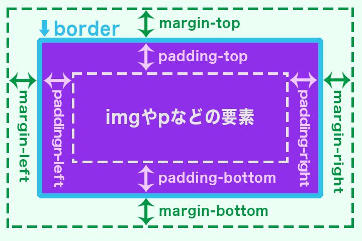 margin paddingのイメージ画像